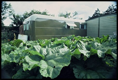 The original Findhorn caravan and a garden of 40 lb. cabbages